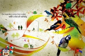 ypirangabirds